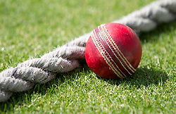 Detail view of a cricket ball near the boundary rope