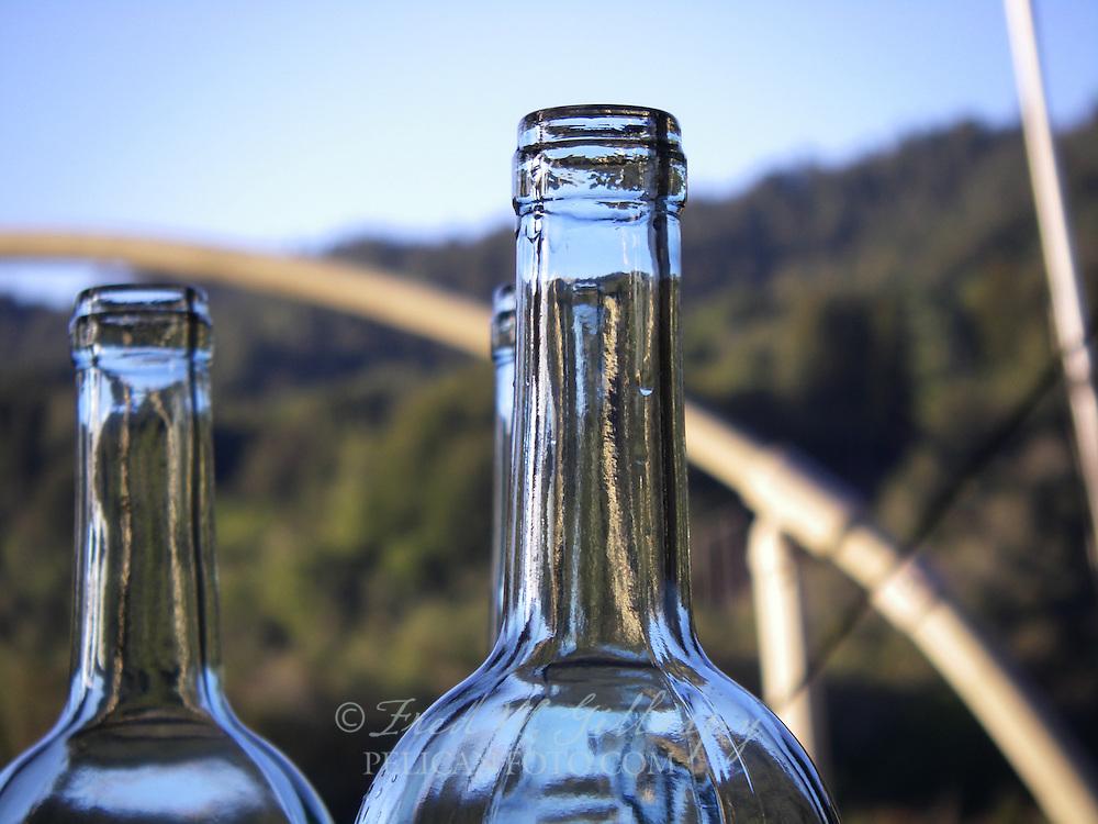Wine Bottling 3916