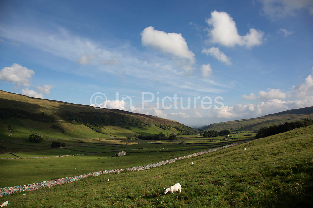 Littondale is a Yorkshire Dale in the Craven district of North Yorkshire, England, UK. Known for it's smooth rolling hills and traditional farmhouses that date from the 17th century.