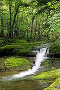 Dry Brook Falls in Arkville