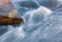 Stock photo of water flowing around moss covered rocks in the Llano River in the Texas Hill Country