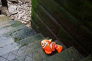 Inflatable Finding Nemo character washed up on some old steps leading down to the River Thames in London, England, United Kingdom. Finding Nemo is a 2003 American computer-animated comedy-drama adventure film produced by Pixar Animation Studios and released by Walt Disney Pictures.