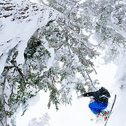 Owen Dudley pulls a grab under one of the many trees of the Cascade Mountains.