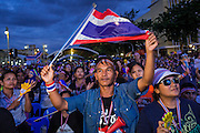 """15 NOVEMBER 2013 - BANGKOK, THAILAND:  An anti-government protester waves the Thai flag at Democracy Monument. Tens of thousands of Thais packed the area around Democracy Monument in the old part of Bangkok Friday night to protest against efforts by the ruling Pheu Thai party to pass an amnesty bill that could lead to the return of former Prime Minister Thaksin Shinawatra. Protest leader and former Deputy Prime Minister Suthep Thaugsuban announced an all-out drive to eradicate the """"Thaksin regime."""" The protest Friday was the biggest since the amnesty bill issue percolated back into the public consciousness. The anti-government protesters have vowed to continue their protests even though the Thai Senate voted down the bill, thus killing it for at least six months.    PHOTO BY JACK KURTZ"""