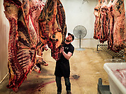 30 APRIL 2020 - STANHOPE, IOWA: WES ZANKER, owner of Stanhope Locker and Market, in Stanhope, Iowa, moves a side of beef from the locker before butchering it. The family owned meat locker slaughters and butchers beef cattle, pigs, and sheep. The COVID-19 (SARS-CoV-2/Coronavirus) pandemic has spread among employees in the meat packing plants in the Iowa, Nebraska, South Dakota, and Minnesota, forcing many to close or curtail operations. This has resulted in farmers euthanizing thousands of pigs and beef cattle. Pork production has been slashed by about 40% because of the pandemic. Meat lockers and family owned butchering facilities have been swamped with farmers and ranchers trying to sell their livestock to them rather than the meat packing plants, but the meat lockers are backed up by the huge increase in supply. Many meat lockers are now full through the end of the year. Stanhope Locker and Market doesn't have any openings for slaughtering and butchering either cattle or pigs until mid-December 2020.       PHOTO BY JACK KURTZ