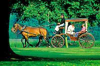 Grande Bretagne, Windsor, Carrosse dans le parc // Great Britain, Winsdor, Carriage in a garden