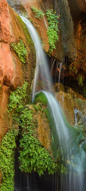 Elves Chasm waterfall, Grand Canyon National Park, Arizona, USA