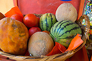 Melons, Manzanolla, Costalegre, Jalisco, Mexico