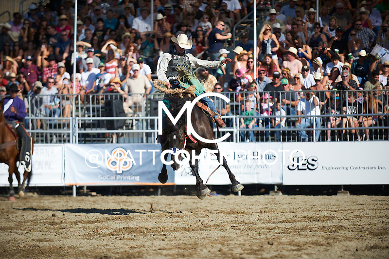 Saddle bronc rider Doug Aldridge of Carthage, MO rides 777 The Voice rides 021 Pinball Wizard at the Rancho Mission Viejo Rodeo in San Juan Capistrano, CA.<br /> <br /> <br /> UNEDITED LOW-RES PREVIEW<br /> <br /> <br /> File shown may be an unedited low resolution version used as a proof only. All prints are 100% guaranteed for quality. Sizes 8x10+ come with a version for personal social media. I am currently not selling downloads for commercial/brand use.