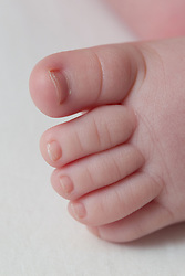 Baby foot.