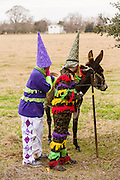 Cajun Mardi Gras revelers stop to pet a donkey during the Faquetigue Courir de Mardi Gras chicken run on Fat Tuesday February 17, 2015 in Eunice, Louisiana. The traditional Cajun Mardi Gras involves costumed revelers competing to catch a live chicken as they move from house to house throughout the rural community.