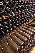 Bottles stacked high in the cellar for aging. Albet i Noya. Bottles aging in the cellar. Penedes Catalonia Spain