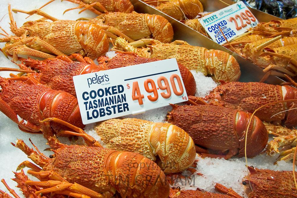 Cooked Tasmanian lobsters for sale at Sydney Fish Market, Darling Harbour, Australia