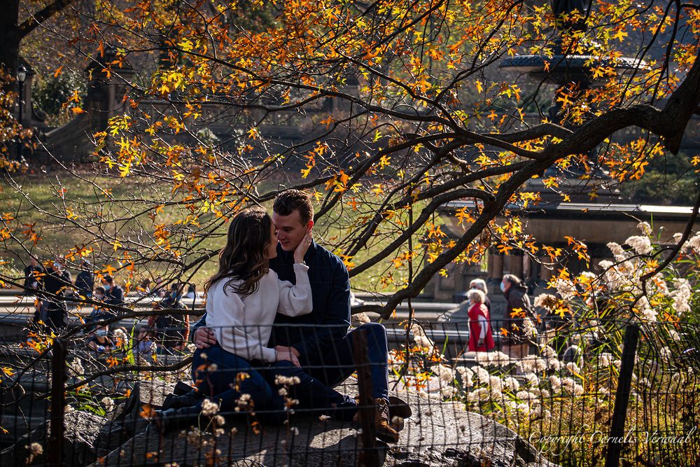 Pandemic or no pandemic, love must go on; Bethesda Fountain in Central Park, Nov. 21, 2020.