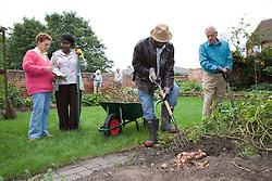 Group of older people gardening in a garden,