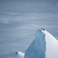 Climbers top an unclimbed mountain in Chile's Cordillera Sarmiento.