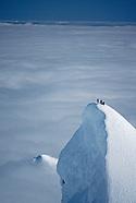 Cordillera Sarmiento Expedition - 1992