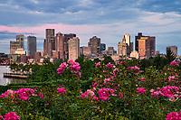 Skyline from Lombardi Garden, East Boston
