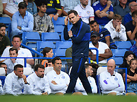 Football - 2019 / 2020 Premier League - Chelsea vs. Sheffield United<br /> <br /> Chelsea head coach Frank Lampard frustrated on the touchline as his side let a 2 goal lead slip, at Stamford Bridge.<br /> <br /> COLORSPORT/ASHLEY WESTERN