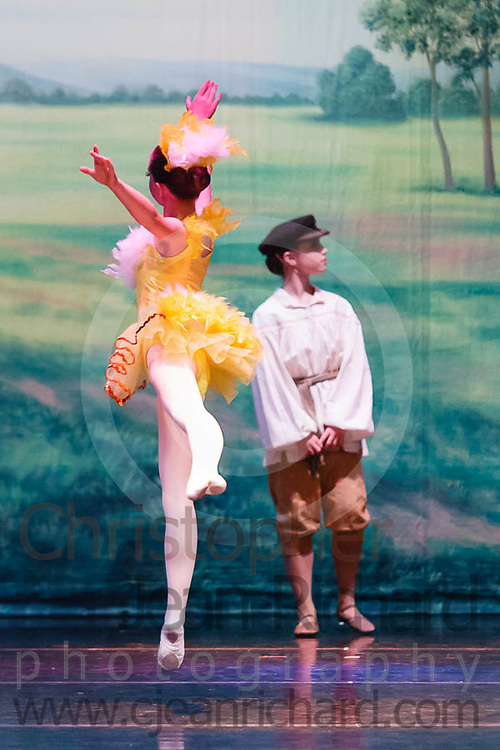 """Students of the Payne Academy of Performing Arts performing """"Peter and the Wolf""""...Choreography: Bridget and Jim Payne...Woodlands College Park High School Theater..The Woodlands, Texas"""