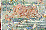 Roman  floor mosaic with a Nile scene depicting a man and a hippopotimus . National Roman Museum, Rome, Italy .<br /> <br /> If you prefer to buy from our ALAMY PHOTO LIBRARY  Collection visit : https://www.alamy.com/portfolio/paul-williams-funkystock/national-roman-museum-rome-mosaic.html <br /> <br /> Visit our ROMAN ART & HISTORIC SITES PHOTO COLLECTIONS for more photos to download or buy as wall art prints https://funkystock.photoshelter.com/gallery-collection/The-Romans-Art-Artefacts-Antiquities-Historic-Sites-Pictures-Images/C0000r2uLJJo9_s0