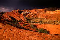 Snow Canyon State Park, near Ivins (near St. George), Utah