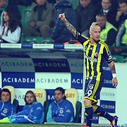 Fenerbahce's Mirosloav Stoch celebrate his goal during their Turkish soccer super league match Bursaspor between Fenerbahce at Ataturk Stadium in Bursa Turkey on Monday, 12 December 2010. Photo by TURKPIX