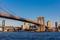 the Brooklyn and  Manhattan Bridges  Landmarks in New York City USA