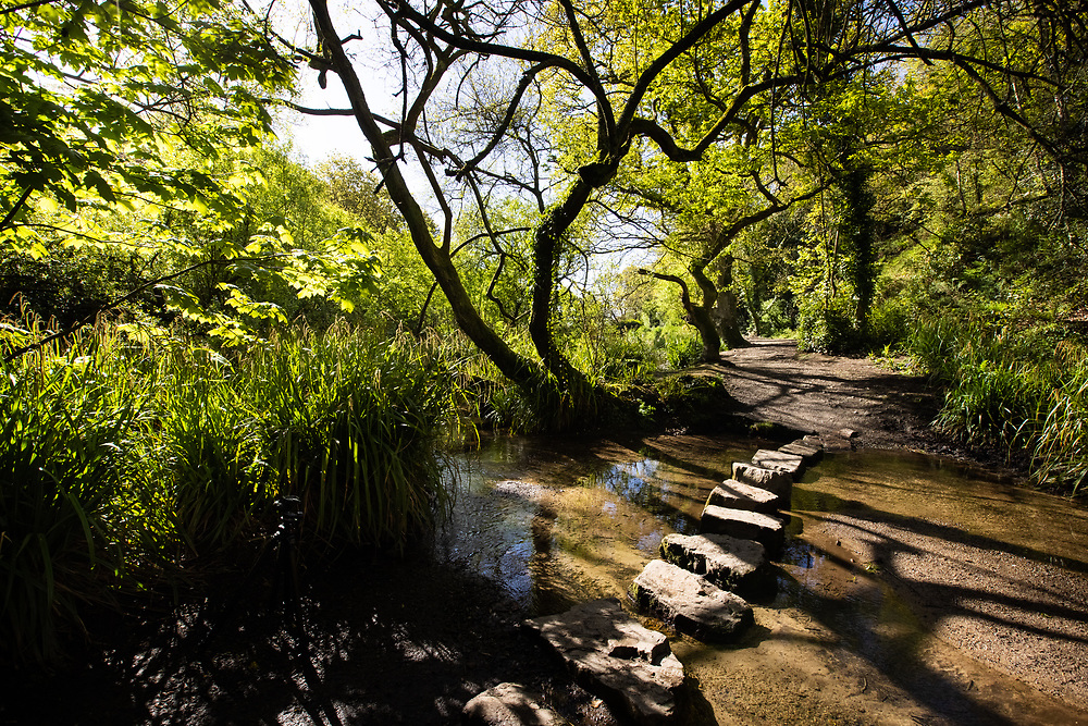 Stepping stones through a stream of water, leading on to a walking path in the St Catherine's woods, Jersey, Channel Islands