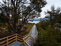 NATIONAL PARK LOS GLACIARES, ARGENTINA - CIRCA FEBRUARY 2019: Walkway path at the National Park los Glaciares in Argentina.