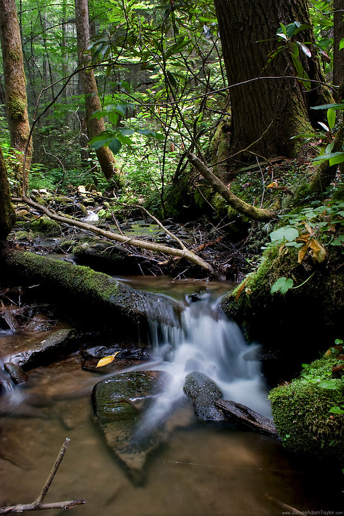 Water spills over rocks along a small stream in the Smokey Mountains National park.