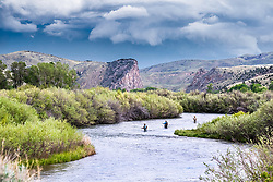Fly-fishermen trying their luck on Montana's Beaverhead River south of Dilion. Montana is braided with amazing trout streams.