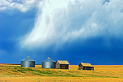 Graneries in storm light<br /> East Central Alberta<br /> Alberta<br /> Canada