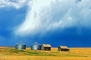 Graneries in storm light<br /> East Central Alberta<br /> Alberta<br /> Canada