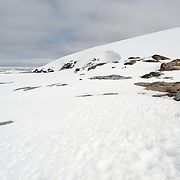 Scenic shot of the snow and rocks of Petermann Island on the Antarctic Peninsula.
