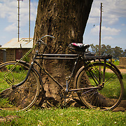Bicycle, owned by a UNDP post-election violence livelihoods recovery project beneficiary. Near Nakuru in Kenya's Rift Valley Province.