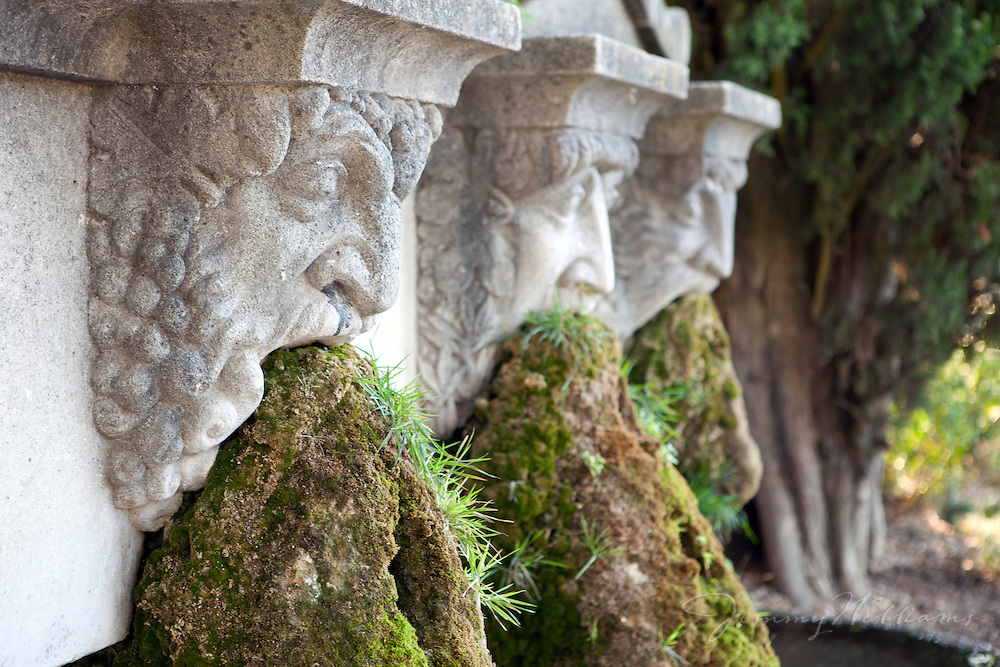This interesting fountain / sculpture has three faces with moss coming out of their mouths - in Lourmarin, France