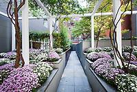 Garden at 311 West Broadway