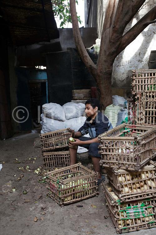 A boy peels vegetables, Bein al-Qasreen area, Islamic Cairo, Cairo, Egypt