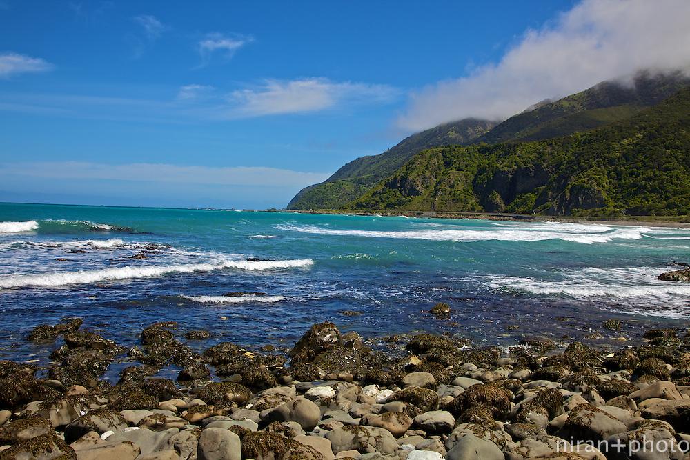 Waipapa Bay, South Island, New Zealand