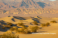 62945-00305 Sand Dunes in Death Valley Natl Park CA