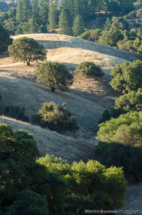 View from Ridge Road, Amador County, California