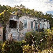 Reef Bay Great House, Feb, 2011