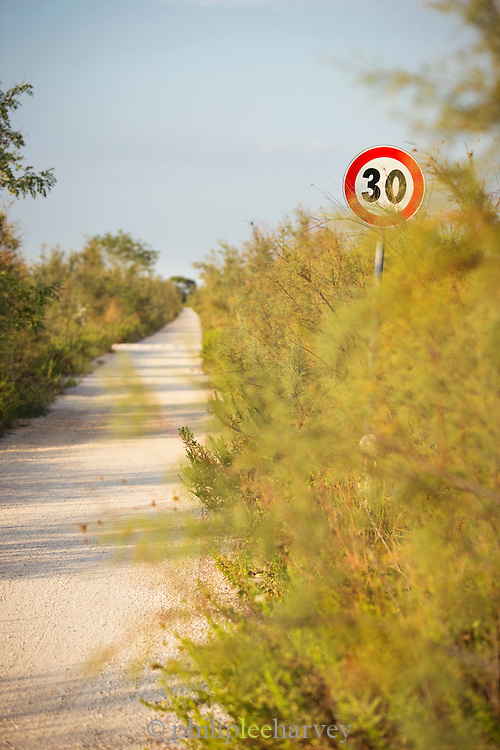 Foot and cycle path, Island of Sant'Erasmo, Venice, Italy, Europe