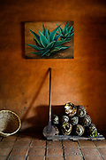 SHOT 2/9/18 10:57:40 AM - A coa de jima, agave peñas and a painting of an agave at the Hacienda San Sebastián Distillery in La Estancia, Mexico. Hacienda San Sebastián is a family owned raicilla and tequila distillery founded in 1930. They grow most of the blue agave used to make the tequila within a few miles of the distillery. Tequila is a regional distilled beverage and type of alcoholic drink made from the blue agave plant, primarily in the area surrounding the city of Tequila, 65 km (40 mi) northwest of Guadalajara, and in the highlands (Los Altos) of the central western Mexican state of Jalisco. (Photo by Marc Piscotty / © 2018)