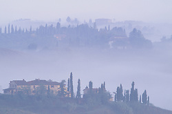 Europe, Italy, Tuscany, San Gimignano, stone house and cypress trees in fog