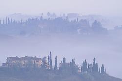 Europe, Italy, Tuscany, San Gimignano, stone house and cypress trees in fog