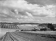 9969-6609. Cedar Mill landscape and clouds, with Sam Walters farm in foreground. June 23, 1946.