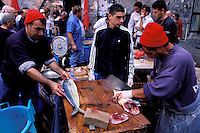 Italie. Sicile. Catane. Marché au poissons. // Fish market. Catania. Sicily. Italy.