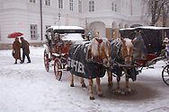 Traditional horse and carriage ride in the snow at Salzburg Christmas Market Austria .<br /> <br /> Visit our AUSTRIA PHOTO COLLECTIONS for more photos to download or buy as wall art prints https://funkystock.photoshelter.com/gallery-collection/Pictures-Images-of-Austria-Photos-of-Austrian-Historic-Landmark-Sites/C0000VRQ9JIAzOxc